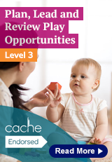 3.2 Plan, lead and review play opportunities