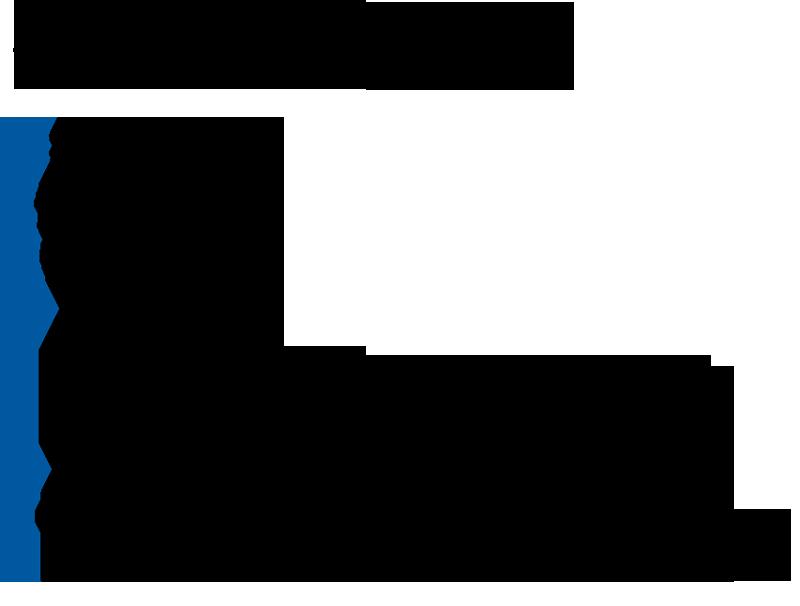 DFElogo